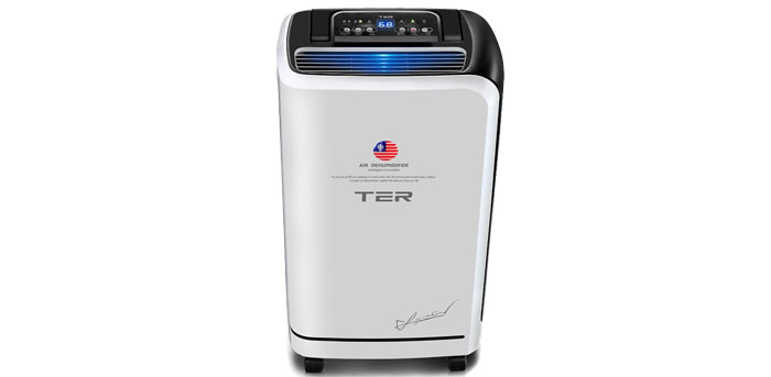 TER Dehumidifier Basement